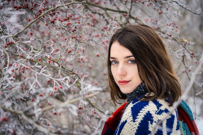 迷人的女孩冬天画象  库存照片