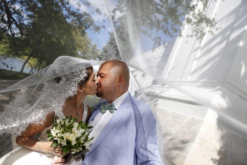 迷人的新娘和新郎 库存照片