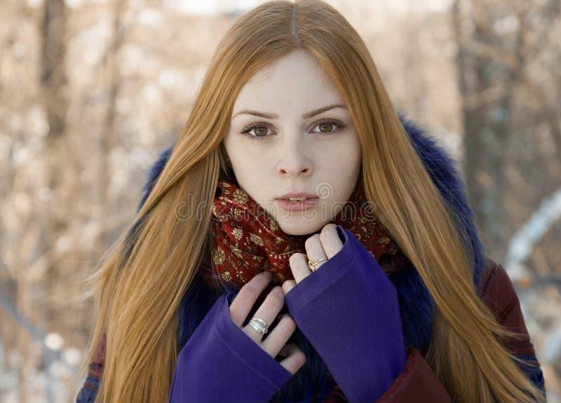 迷人的美丽的女孩特写镜头画象在冬天 库存照片