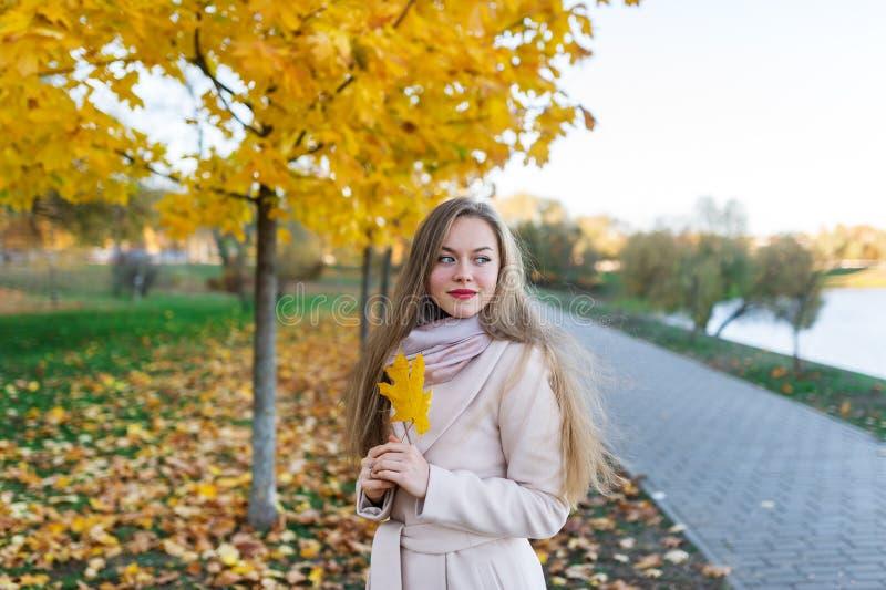 迷住,米黄外套的神奇女孩在秋天在公园 库存照片
