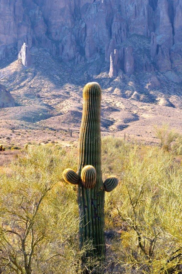 迷信山在亚利桑那 图库摄影