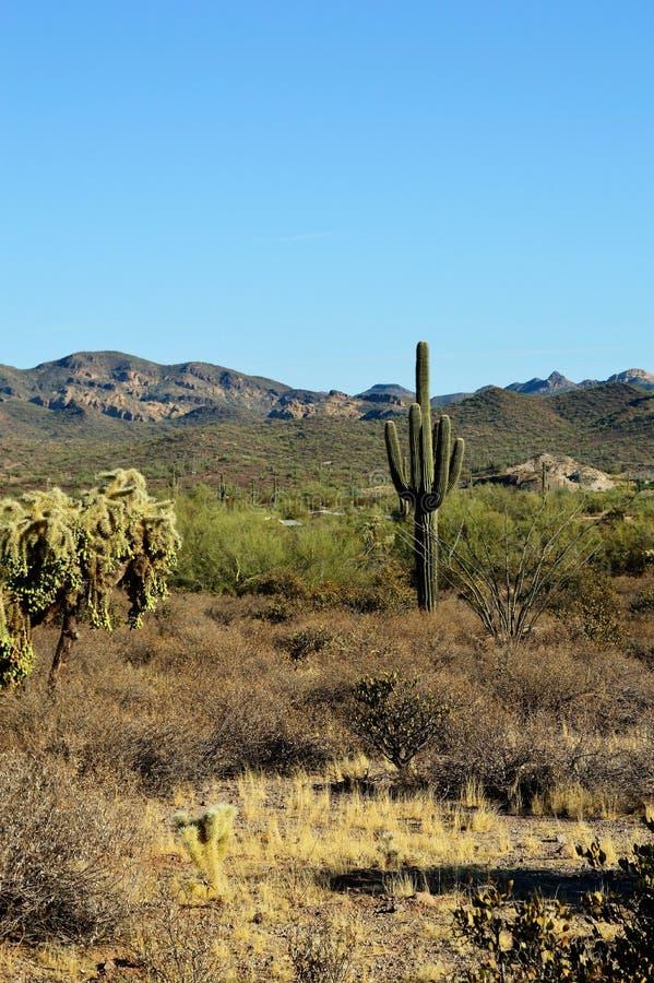 迷信山在亚利桑那 免版税库存照片