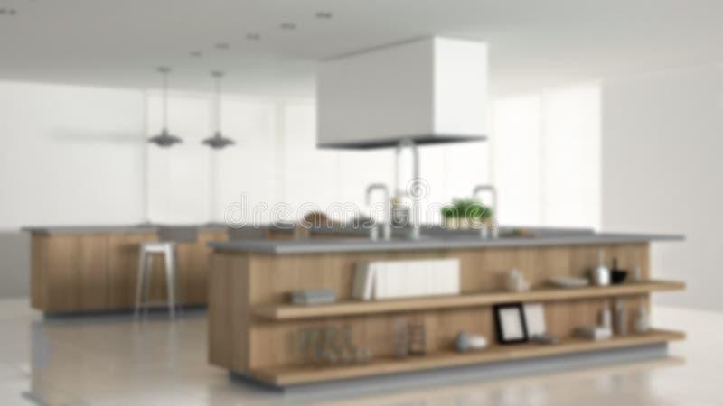 迷离背景室内设计,有辅助部件的minimalistic专业现代木厨房,当代内部 皇族释放例证