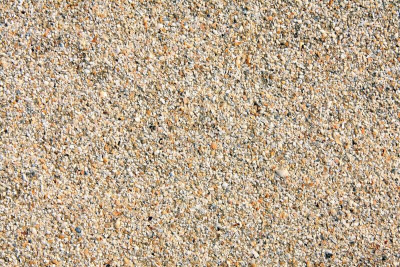 追猎谷物沙子 库存图片