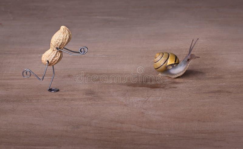 Download 追逐蜗牛 库存照片. 图片 包括有 小雕象, 滑稽, 泄密者, 场面, 滑稽可笑, 快速, 幽默, 爬行 - 22356166
