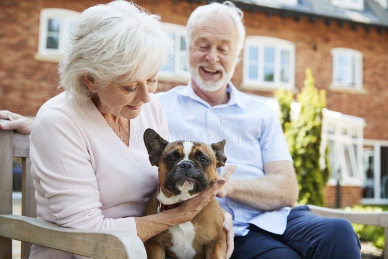 退休的夫妇坐与宠物法国牛头犬的长凳在协助的生存设施 免版税库存照片