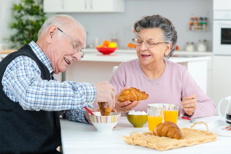 退休资深夫妇生活方式生存概念 库存照片