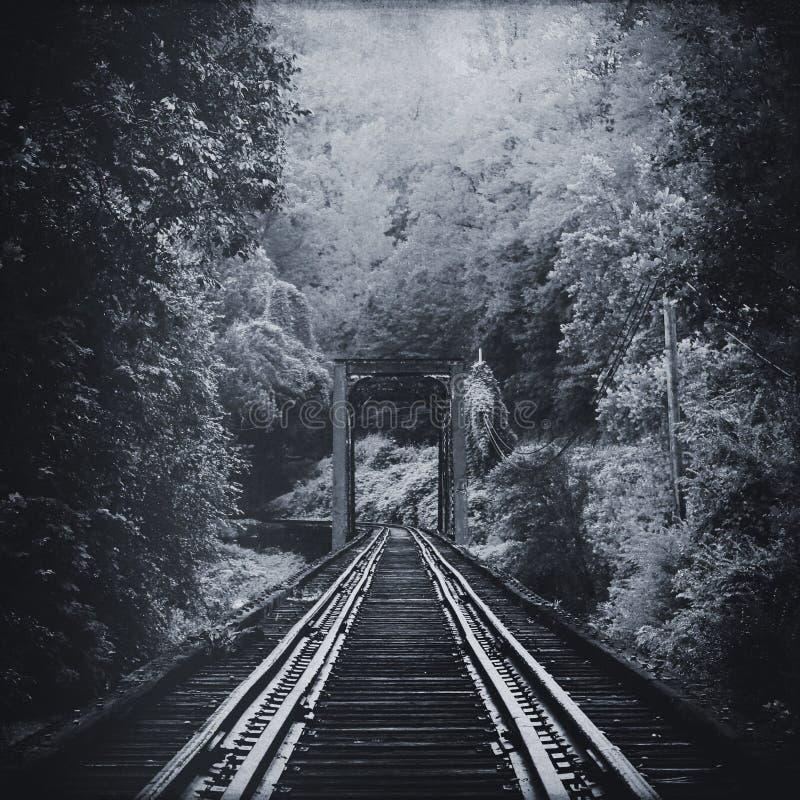 退色入森林的真正地老葡萄酒火车铁轨的黑白方形的照片 免版税库存照片