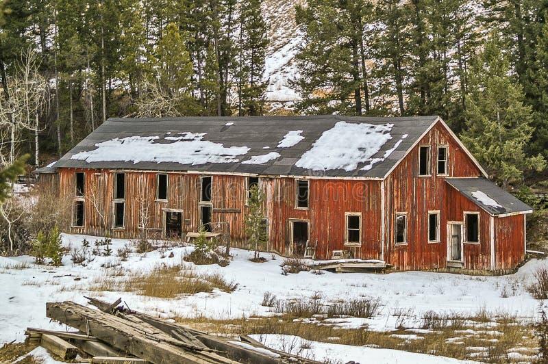 退色的油漆和焦油纸屋顶 免版税库存照片