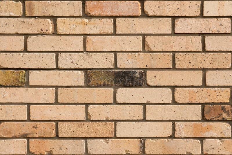 退色的砖墙背景 色的砖门面 免版税库存图片
