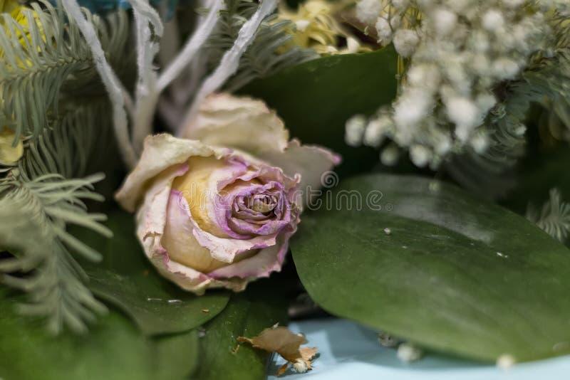 退色的花关闭  桃红色玫瑰和绿松石菊花花束  库存图片