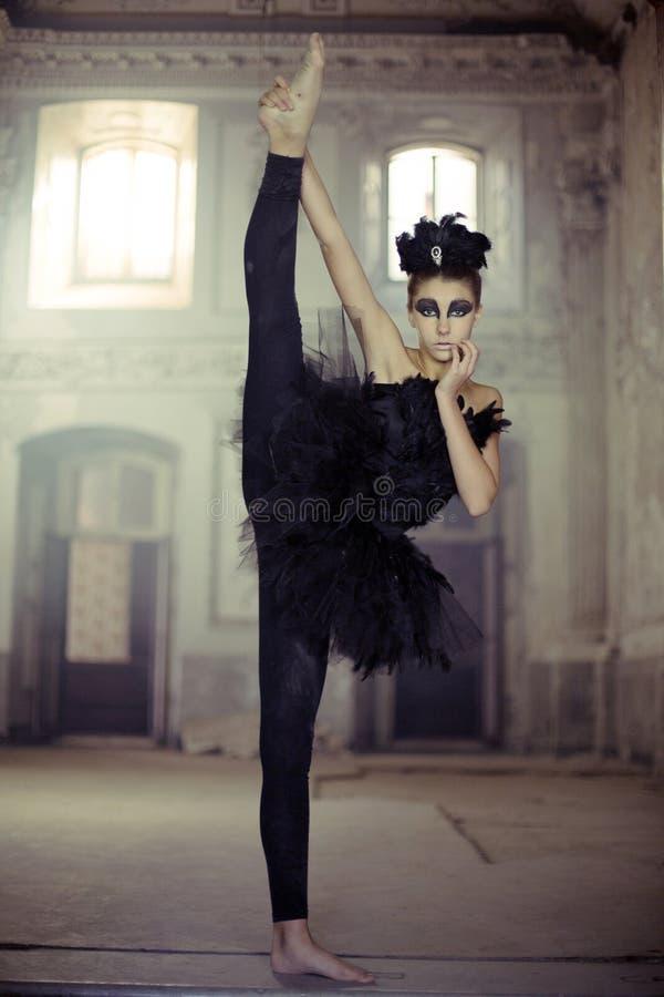适合的年轻跳芭蕾舞者作为天鹅 免版税库存照片