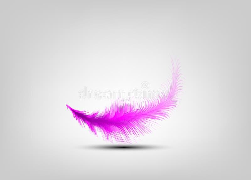选拔在灰色背景隔绝的桃红色羽毛传染媒介 升空羽毛,轻微概念 库存例证