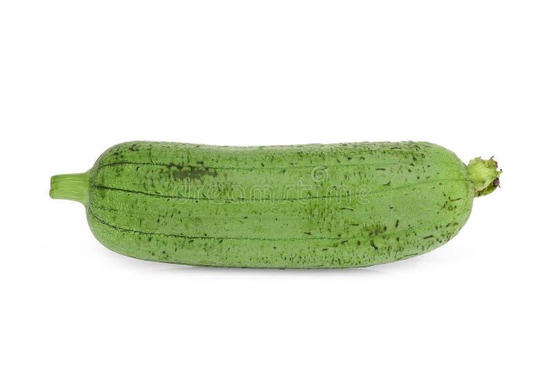 选拔在白色或luffa隔绝的新鲜的绿色丝瓜 库存图片