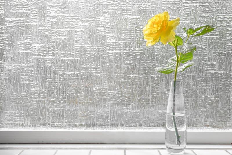 选拔玫瑰色在黄色颜色 库存图片