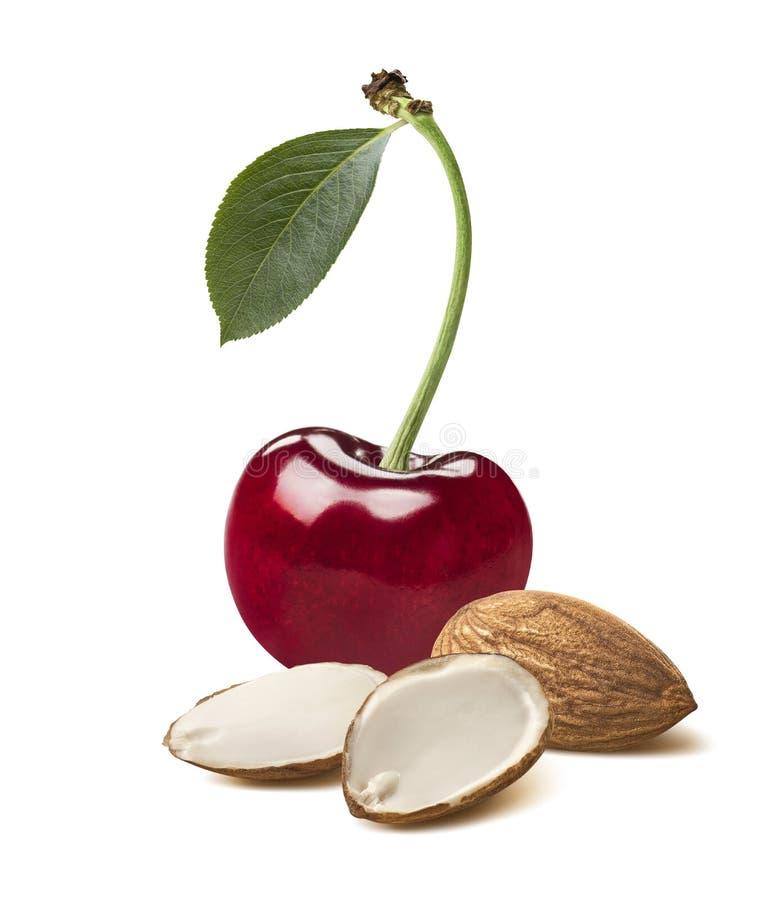 选拔红色樱桃在白色背景隔绝的切的杏仁 免版税库存图片