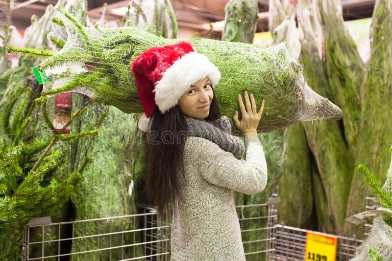 选择圣诞树的圣诞老人帽子的少妇 免版税库存照片