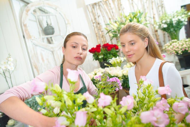 选择玫瑰的卖花人为顾客 库存图片