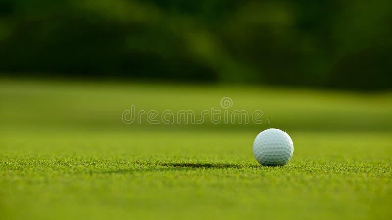 选择聚焦 在孔附近的白色高尔夫球在绿草好f 库存照片
