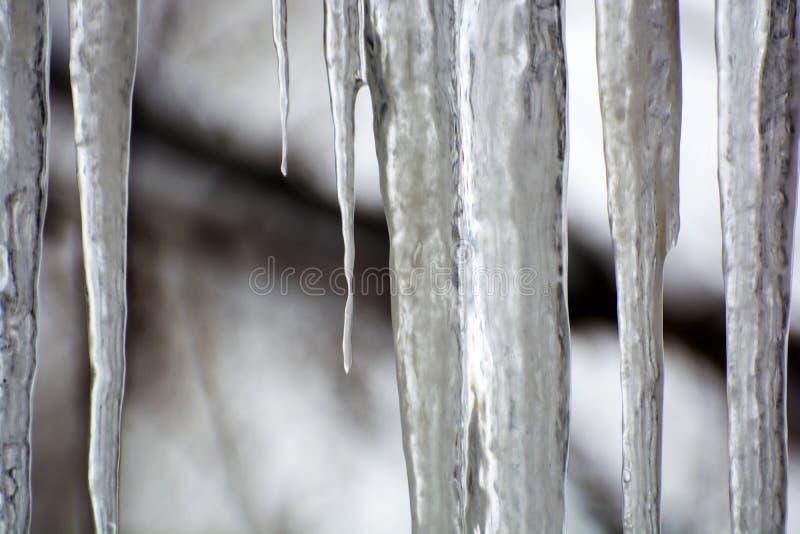 透明冰柱照片在被弄脏的背景的 库存照片