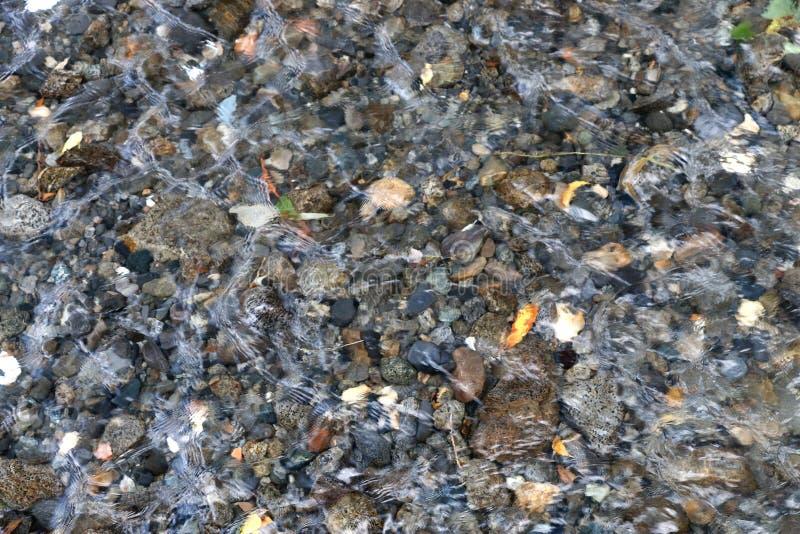 透明清楚的水和小石头 免版税库存照片