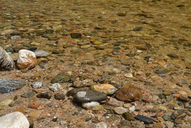透明的水河  库存图片