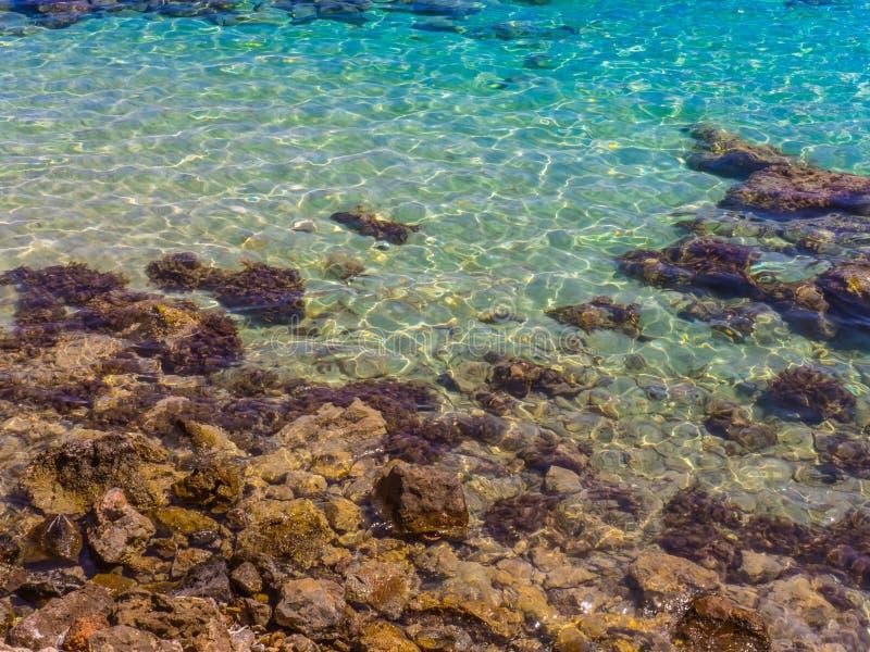 透明的蓝色水的腐蚀剂作用-岩石岸 免版税库存图片