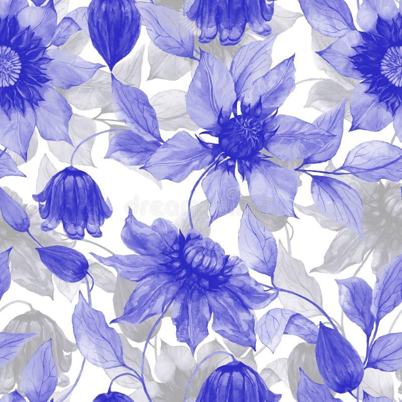 透明紫色铁线莲属在上升的枝杈开花反对白色背景 无缝花卉的模式 多孔黏土更正高绘画photoshop非常质量扫描水彩 皇族释放例证