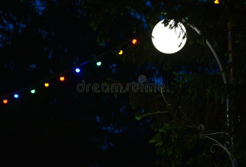 透明苹果黑色闪亮指示的晚上 库存图片