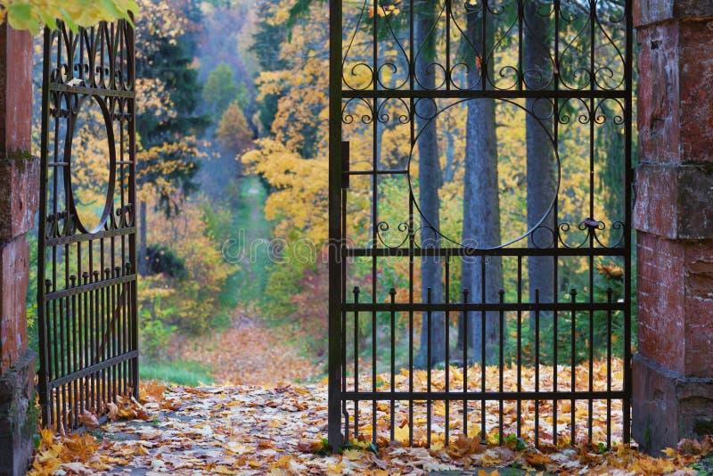 透雕细工老铁门在秋天公园 免版税库存图片