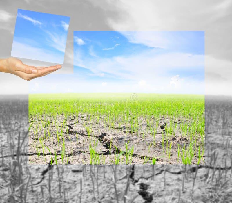 递举行每一部分的与的云彩的曲线锯的农业稻田 向量例证