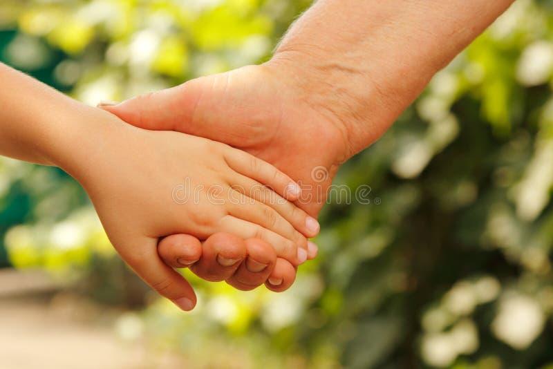 递室外家庭的自然 免版税库存照片
