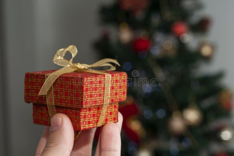 递拿着在圣诞树前面的一个圣诞节礼物 免版税库存图片