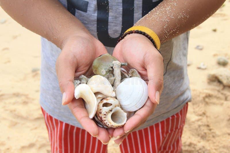 递拿着蜗牛的一个人 库存照片