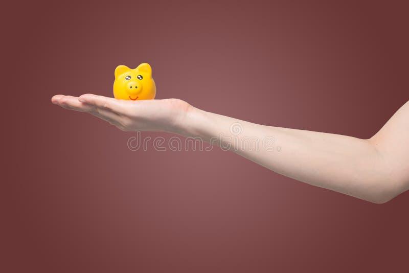 递拿着被隔绝的梯度红色背景的黄色存钱罐,存金钱为投资概念 库存图片