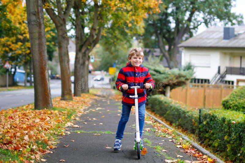 逗人喜爱乘坐在街道和城市步行步行上的滑行车的矮小的个学校孩子男孩  室外儿童的活动  免版税库存照片
