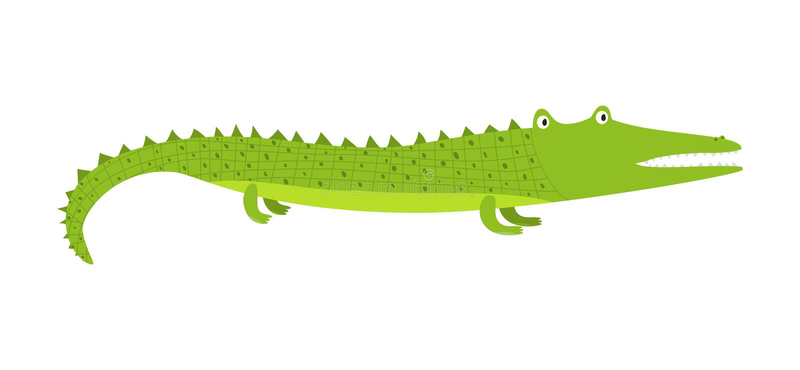 逗人喜爱的与短的腿的动画片绿色长的鳄鱼 向量例证