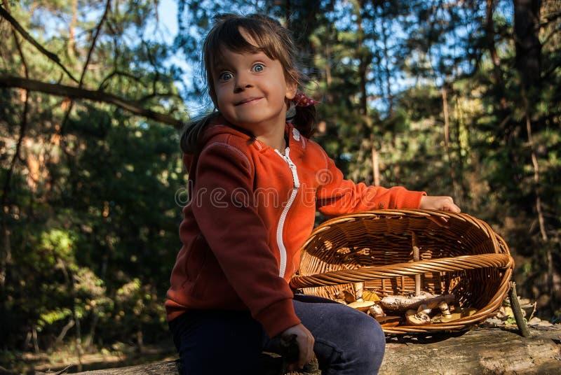 逗人喜爱的五年老女孩坐一棵下落的树在森林里用在篮子的蘑菇 免版税库存图片