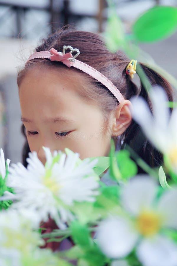 逗人喜爱的亚洲矮小的美丽的女孩气味花 免版税库存图片
