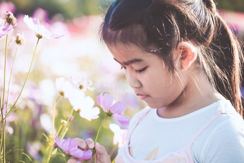逗人喜爱的亚裔小孩女孩嗅到的波斯菊花 免版税库存图片
