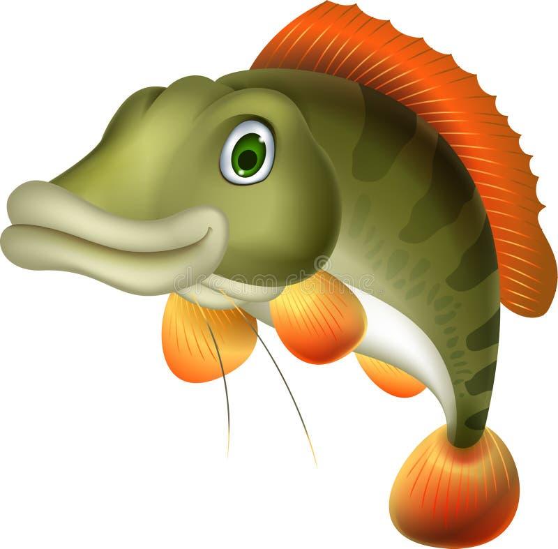 逗人喜爱的低音鱼动画片 向量例证