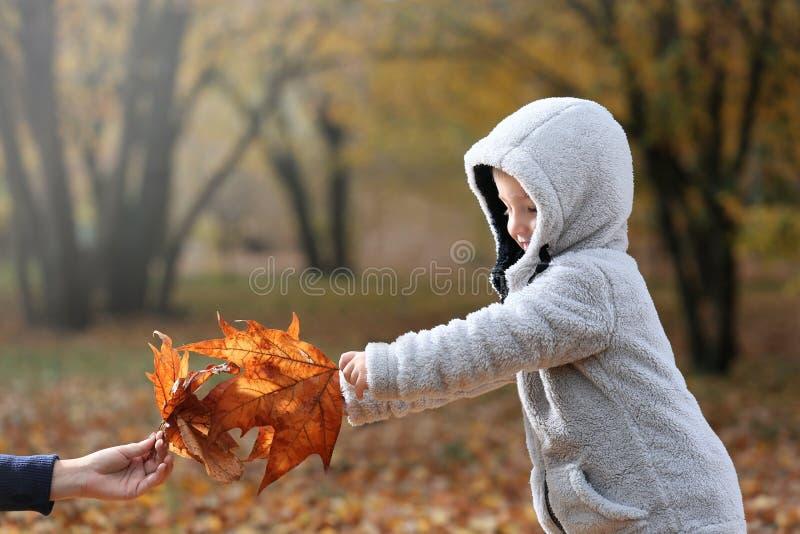 逗人喜爱的使用与叶子的小男孩和他的母亲在秋天公园 库存图片
