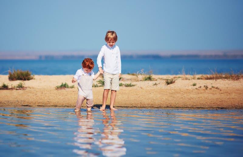 逗人喜爱的兄弟,走沿浅水区的湖的小孩夏天早晨 免版税库存照片