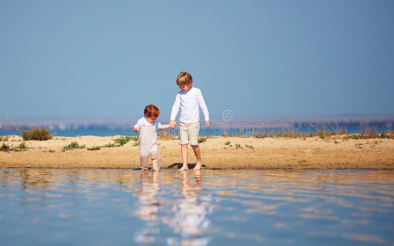 逗人喜爱的兄弟,走沿浅水区的湖的小孩夏天早晨 免版税库存图片