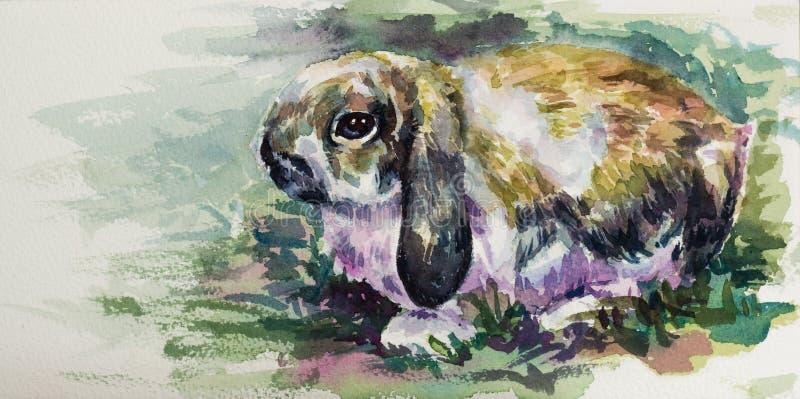 逗人喜爱的兔子水彩在纸的 皇族释放例证
