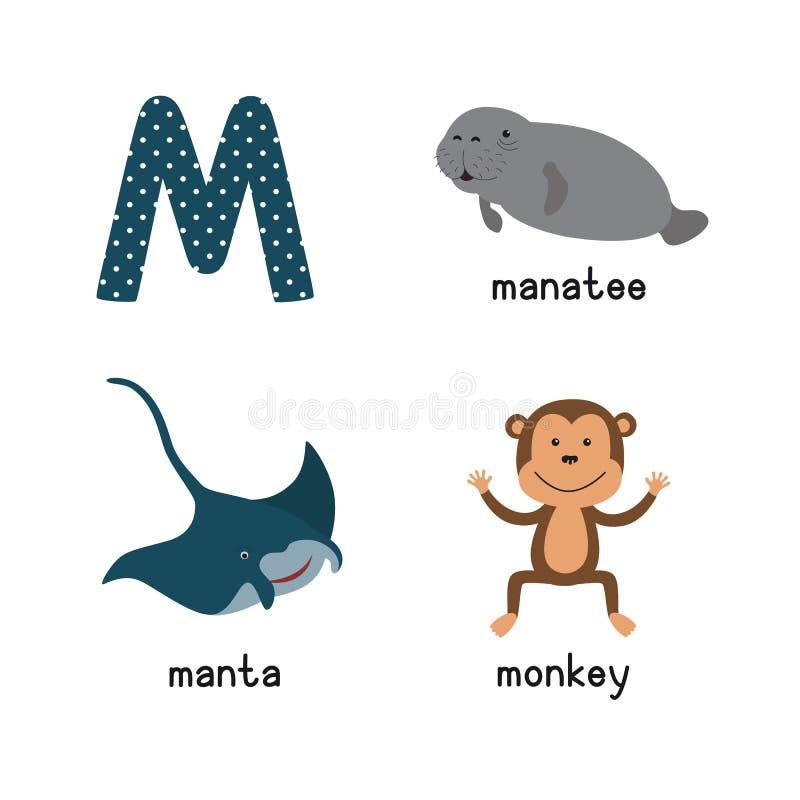 逗人喜爱的动物园字母表 Alphabet.m letter.mushroom月亮老鼠魔术猴子 滑稽的动画片动物:海牛,女用披巾,猴子 皇族释放例证