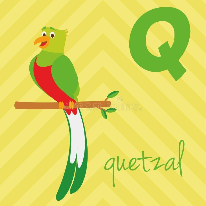 逗人喜爱的动画片动物园说明了与滑稽的动物的字母表 西班牙字母表:格查尔的Q 皇族释放例证