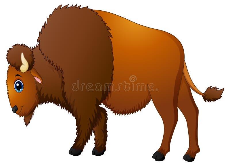 逗人喜爱的北美野牛动画片 库存例证