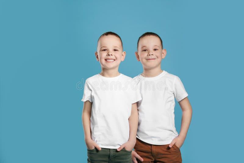 逗人喜爱的双胞胎弟弟画象  免版税图库摄影