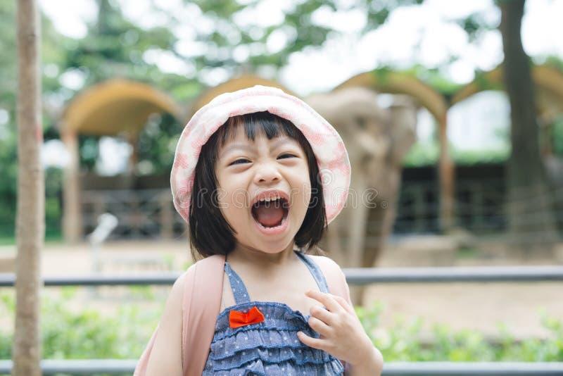 逗人喜爱的在动物园的女孩观看的动物在温暖和晴朗的夏日 观看动物园动物的孩子通过窗口 免版税库存图片